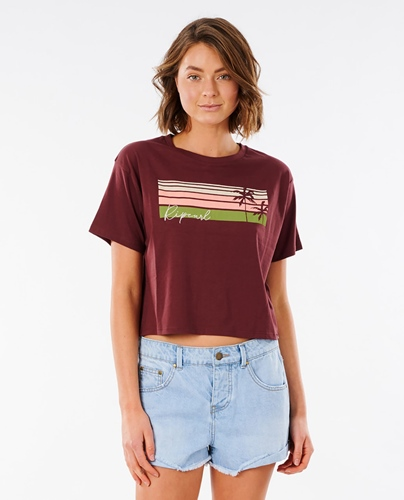 RC T-Shirt Tallows Crop